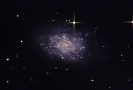 NGC 7793 Spiral Galaxy